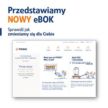 1c40c4d1fa8f6d eBOK PGNiG - Załatw wszystko online!